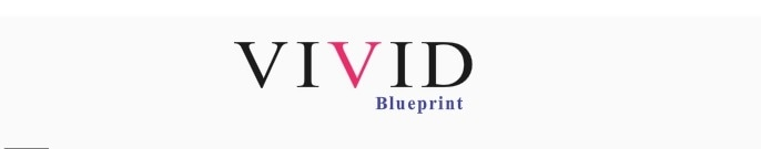 Vivid Blueprint promo codes