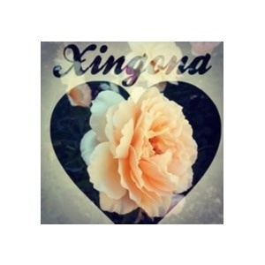 Xingona Crafts promo codes